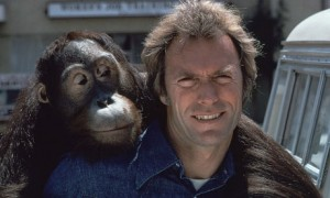Clint Eastwood and Clyde 0081 300x180 No Business Like Monkey Show Business