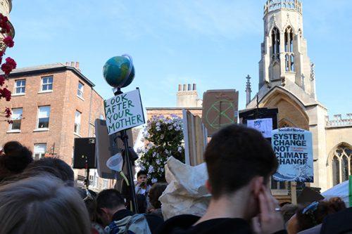 Placards at York Divestation Strikes
